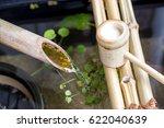 japanese tsukubai | Shutterstock . vector #622040639