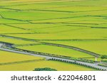 country road around rice field...   Shutterstock . vector #622046801