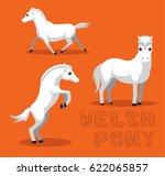 horse welsh pony cartoon vector ... | Shutterstock .eps vector #622065857