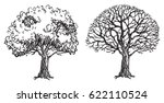 Bare trees. Two vector bare trees are hand  drawing  at doodle style