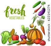 set of colorful sketch... | Shutterstock .eps vector #622141274
