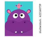 hippopotamus head facelooking... | Shutterstock .eps vector #622160759