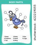 illustration of nightingale ...   Shutterstock .eps vector #622219055