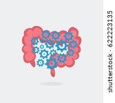 intestinal transit vector... | Shutterstock .eps vector #622223135