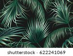 tropical palm leaves  jungle... | Shutterstock .eps vector #622241069