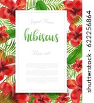 summer colorful hawaiian flyer... | Shutterstock .eps vector #622256864
