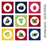 white round icons with fruit... | Shutterstock .eps vector #622270541