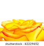 bud of an orange rose close up | Shutterstock . vector #62229652