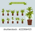 green plants in pots   vector... | Shutterstock .eps vector #622306415