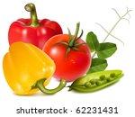 photo realistic vector... | Shutterstock .eps vector #62231431