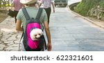 Stock photo cute dog peeking from animal carrying backpack 622321601