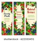 berries vector banners. farm or ... | Shutterstock .eps vector #622333451