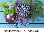 freshly blueberries in metal... | Shutterstock . vector #622364501