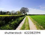 path dirt track in countryside | Shutterstock . vector #622382594
