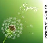 dandelion and spring background    Shutterstock . vector #622383545
