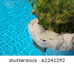 luxury pool detail with exotic... | Shutterstock . vector #62241292