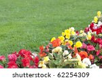 Flowers With A Blurred Lawn As...