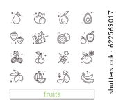 fruits   berries thin line... | Shutterstock .eps vector #622569017