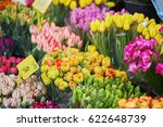 Variety Of Tulips On Flower...