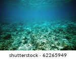 Underwater View In Red Sea ...