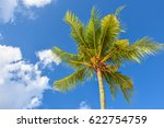 branches of the green coconut... | Shutterstock . vector #622754759