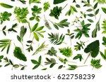 styled green leaves pattern.... | Shutterstock . vector #622758239