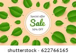 banner for sale with flying... | Shutterstock .eps vector #622766165