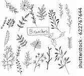 hand drawn branches collection   | Shutterstock .eps vector #622767644