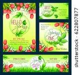 spring sale banner template set.... | Shutterstock .eps vector #622807877