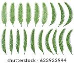Exotic Nature Vector Set ...