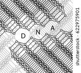 molecules concept of neurons... | Shutterstock .eps vector #622975901