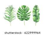 watercolor tropical leaves set... | Shutterstock . vector #622999964