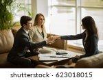 handshake of business partners... | Shutterstock . vector #623018015