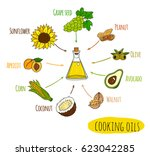 hand drawn infographic of... | Shutterstock .eps vector #623042285