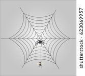 spider in a web catches a fly | Shutterstock .eps vector #623069957