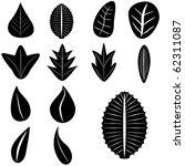 vector   set of leaves | Shutterstock .eps vector #62311087