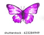 This Is The Paint Of Butterfly...