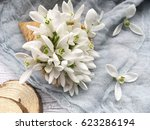 waffle cone with snowdrops on...   Shutterstock . vector #623286194