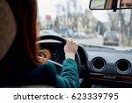 a brunette... | Shutterstock . vector #623339795