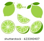 Lime With Green Leaves  Slice...