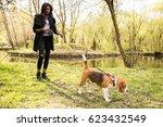 Stock photo african american woman walking dog 623432549