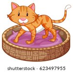 ginger cat in basket... | Shutterstock .eps vector #623497955