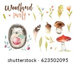 cute baby animal nursery... | Shutterstock . vector #623502095