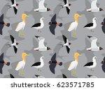 random south american birds... | Shutterstock .eps vector #623571785