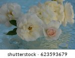 beautiful roses reflected in... | Shutterstock . vector #623593679