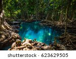 tapom in krabi thailand | Shutterstock . vector #623629505