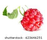 raspberry. vector illustration. | Shutterstock .eps vector #623646251