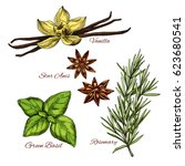 spices and herbal flavorings... | Shutterstock .eps vector #623680541