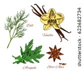 herbs and spices vector icons.... | Shutterstock .eps vector #623682734