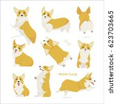 Stock vector cute welsh corgi puppy vector illustration flat design 623703665